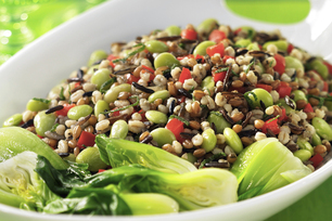 Warm Barley and Lentil Salad